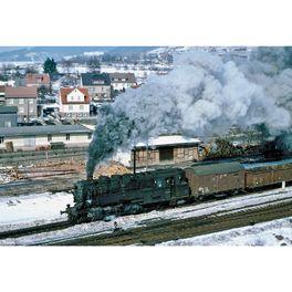Winter19, Dampflok BR 95 DR